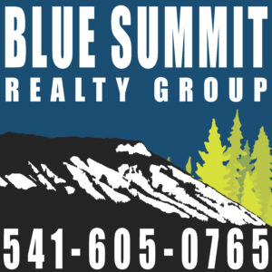 Blue Summit Realty Group logo